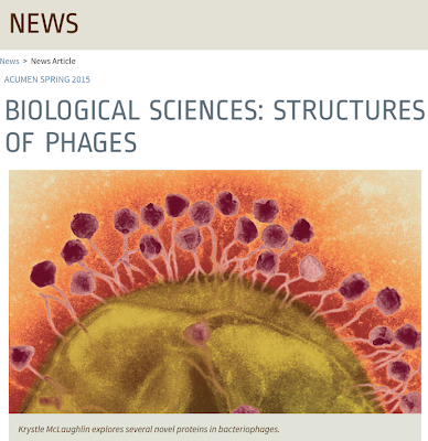 http://www1.lehigh.edu/news/biological-sciences-structures-phages